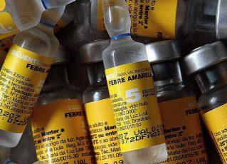 Vacina febre amarela. Foto: Reprodução