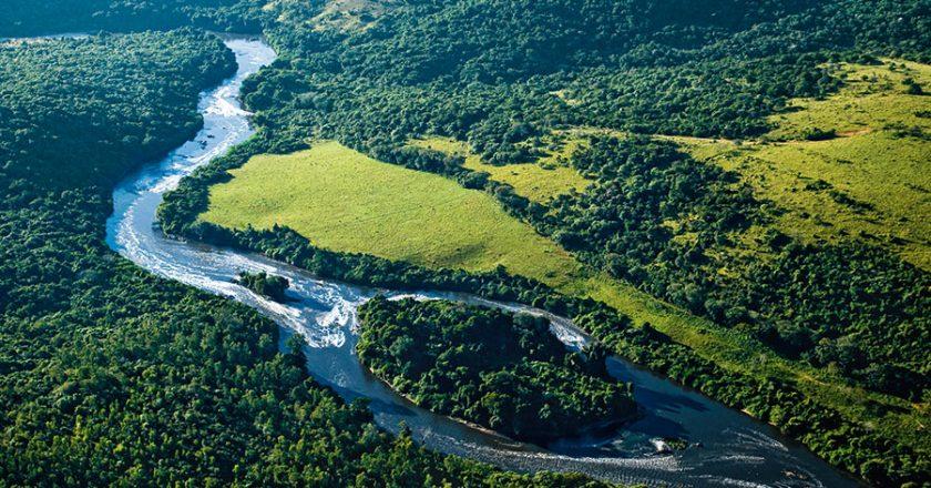 Amazônia. Foto: Reprodução de Internet