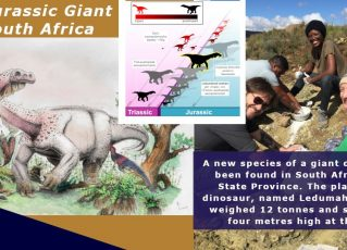 Nova espécie de dinossauro é encontrada na África do Sul. Foto: Montagem/Wits University