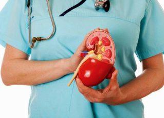Doença renal crônica. Foto: Reprodução de Internet