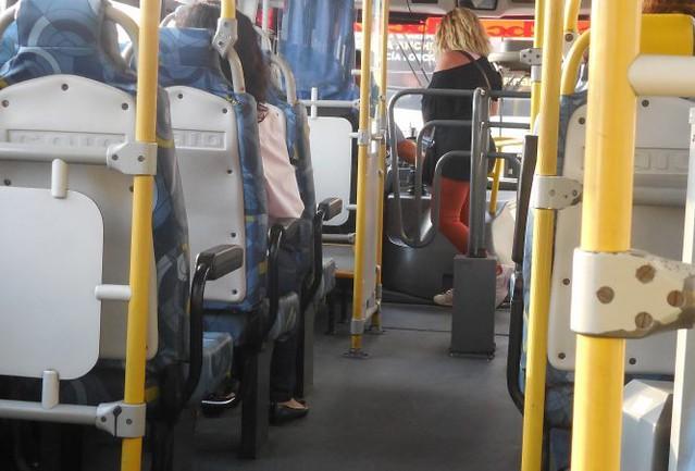 Ônibus. Foto: Reprodução de Internet