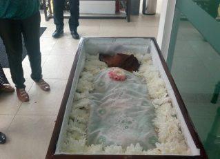 Foto de cão velado em caixão viraliza nas redes sociais. Foto: Reprodução de Internet