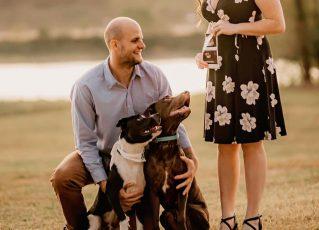 Taylor e Rob Reens com cães. Foto: Reprodução de Internet