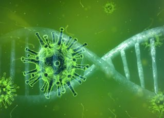 Coronavírus. Foto: Pixabay